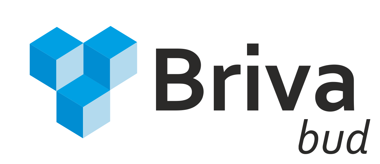 logo briva_bud