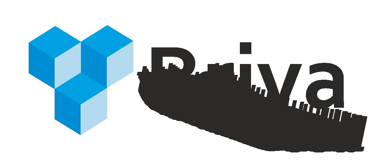 logo briva_trans